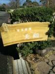 日本庭園03